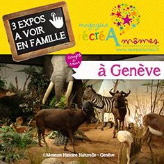 2017_Expos Genève_BLOG_une