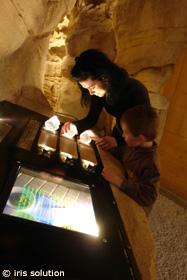 Musée de l'ours des cavernes_©Iris Solution