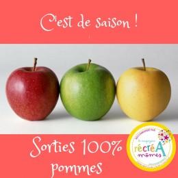 vignette pommes